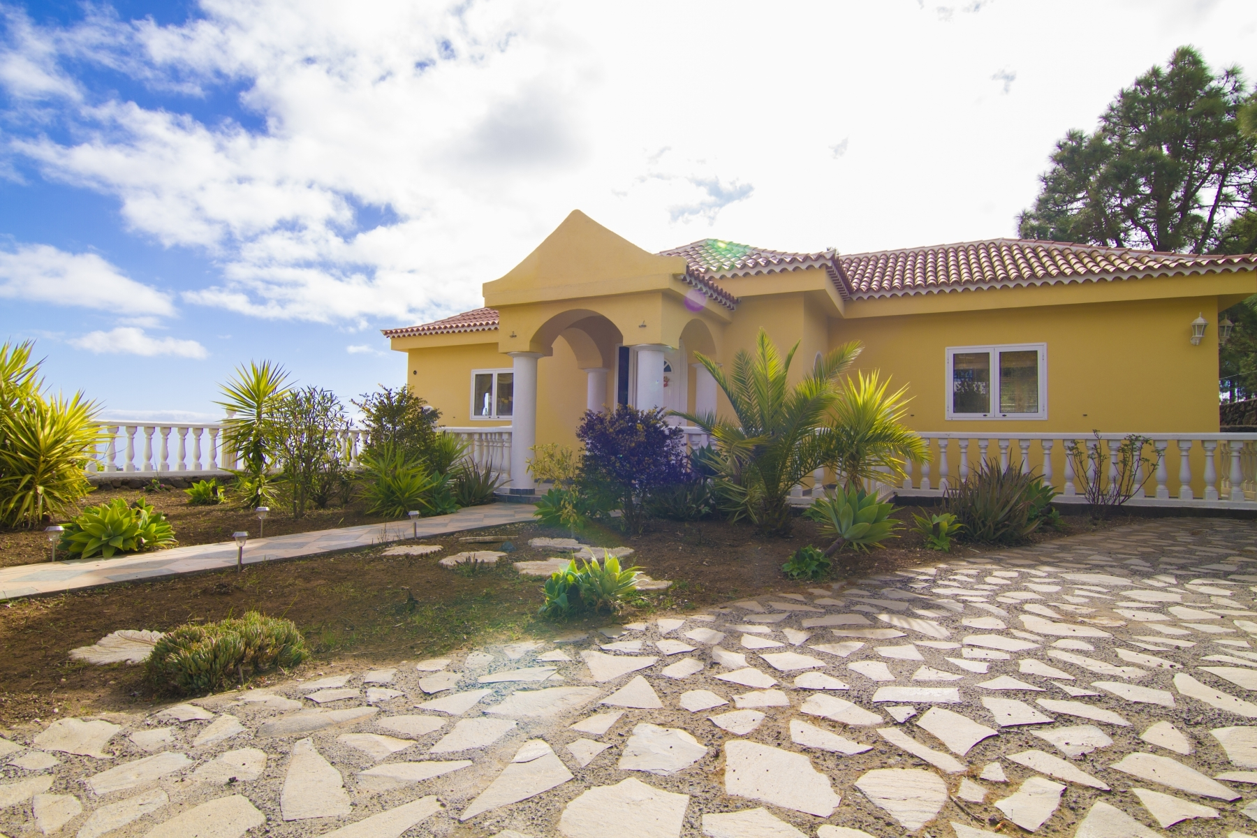 Properties for Sale in Tenerife, Canary Islands, Spain | SylkWayStar Real Estate. Finca with vineyard - Cruz de Tea - Granadilla de Abona . Image-21843