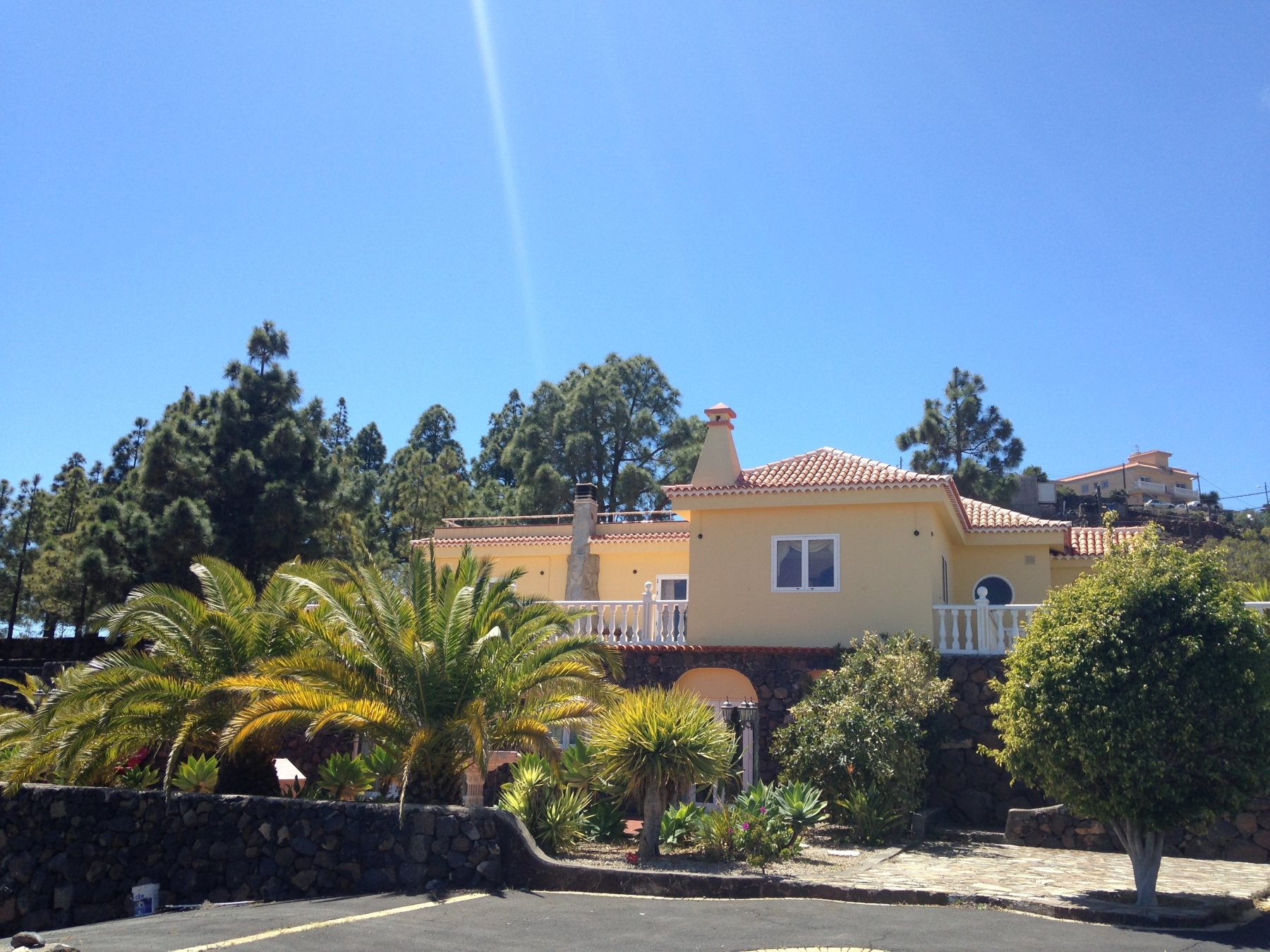 Properties for Sale in Tenerife, Canary Islands, Spain | SylkWayStar Real Estate. Finca with vineyard - Cruz de Tea - Granadilla de Abona . Image-21835