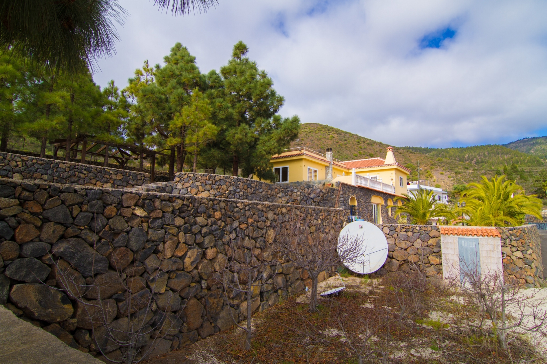 Properties for Sale in Tenerife, Canary Islands, Spain | SylkWayStar Real Estate. Finca with vineyard - Cruz de Tea - Granadilla de Abona . Image-21838