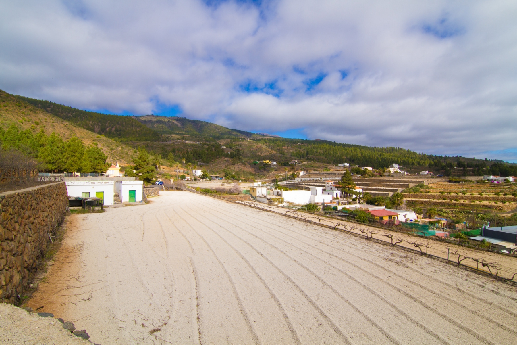 Properties for Sale in Tenerife, Canary Islands, Spain | SylkWayStar Real Estate. Finca with vineyard - Cruz de Tea - Granadilla de Abona . Image-21834