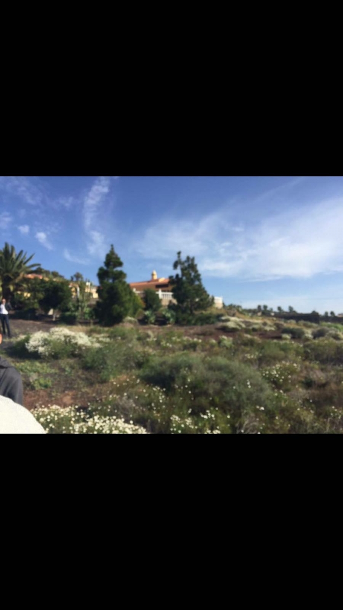 Properties for Sale in Tenerife, Canary Islands, Spain | SylkWayStar Real Estate. Finca with 10.000m<sup>2</sup>  of land. Image-22181