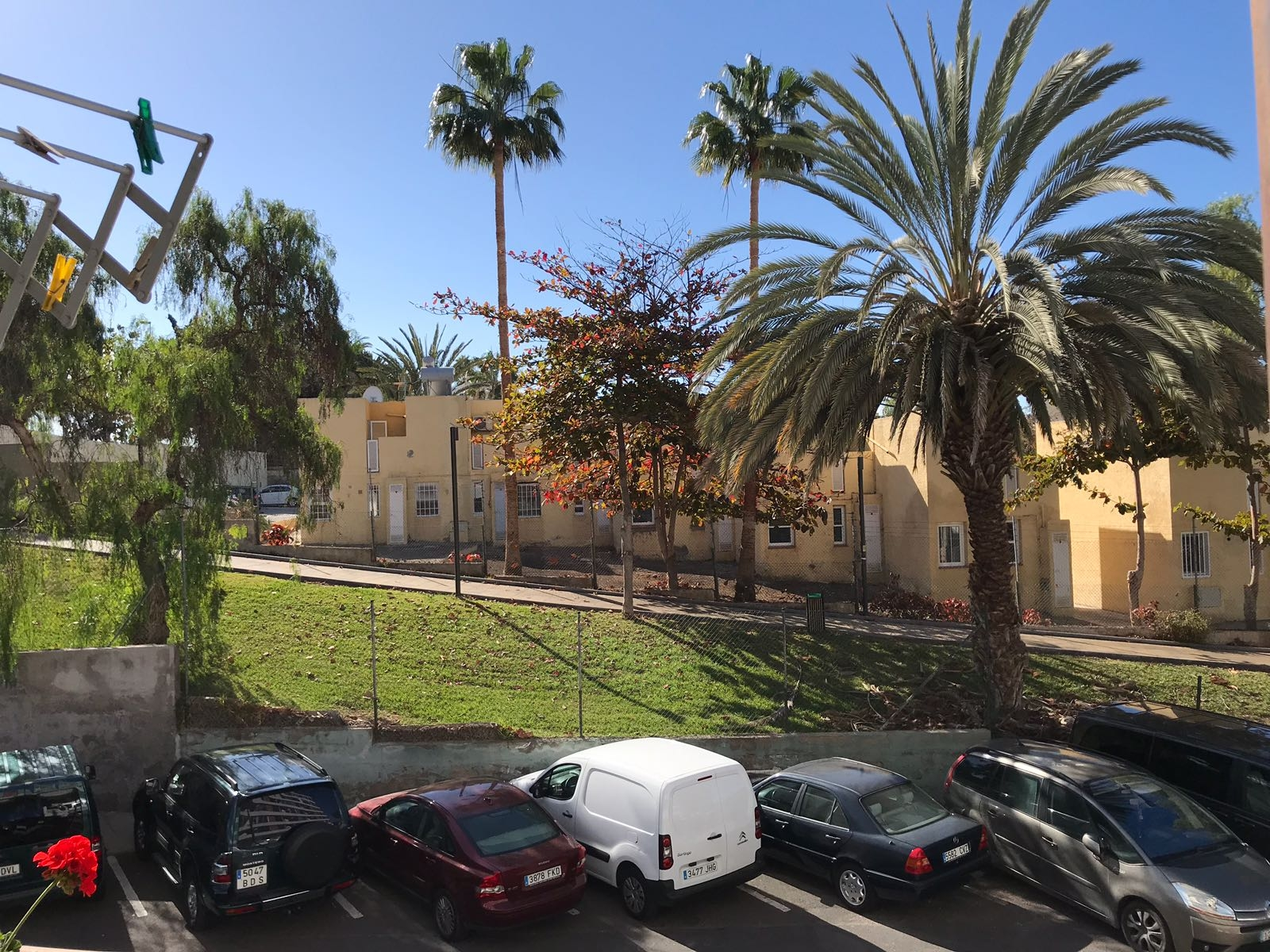 Properties for Sale in Tenerife, Canary Islands, Spain | SylkWayStar Real Estate. 1 Bedroom apartment Los Agaves. Image-22280