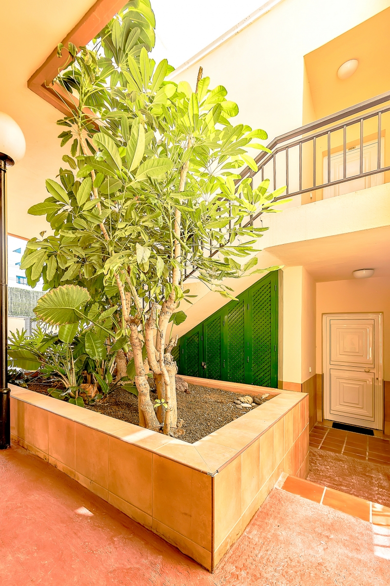 Properties for Sale in Tenerife, Canary Islands, Spain | SylkWayStar Real Estate. 1 bedroom apartment Yucca Park. Image-22597