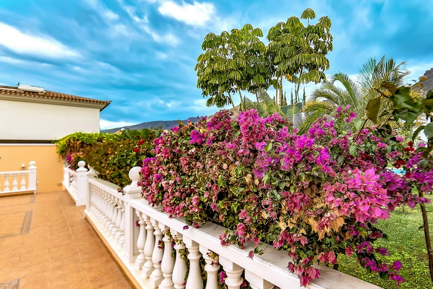 Properties for Sale in Tenerife, Canary Islands, Spain | SylkWayStar Real Estate. Luxury villa in the fashionable area of the south of the island of Tenerife – Madroñal. Image-22896