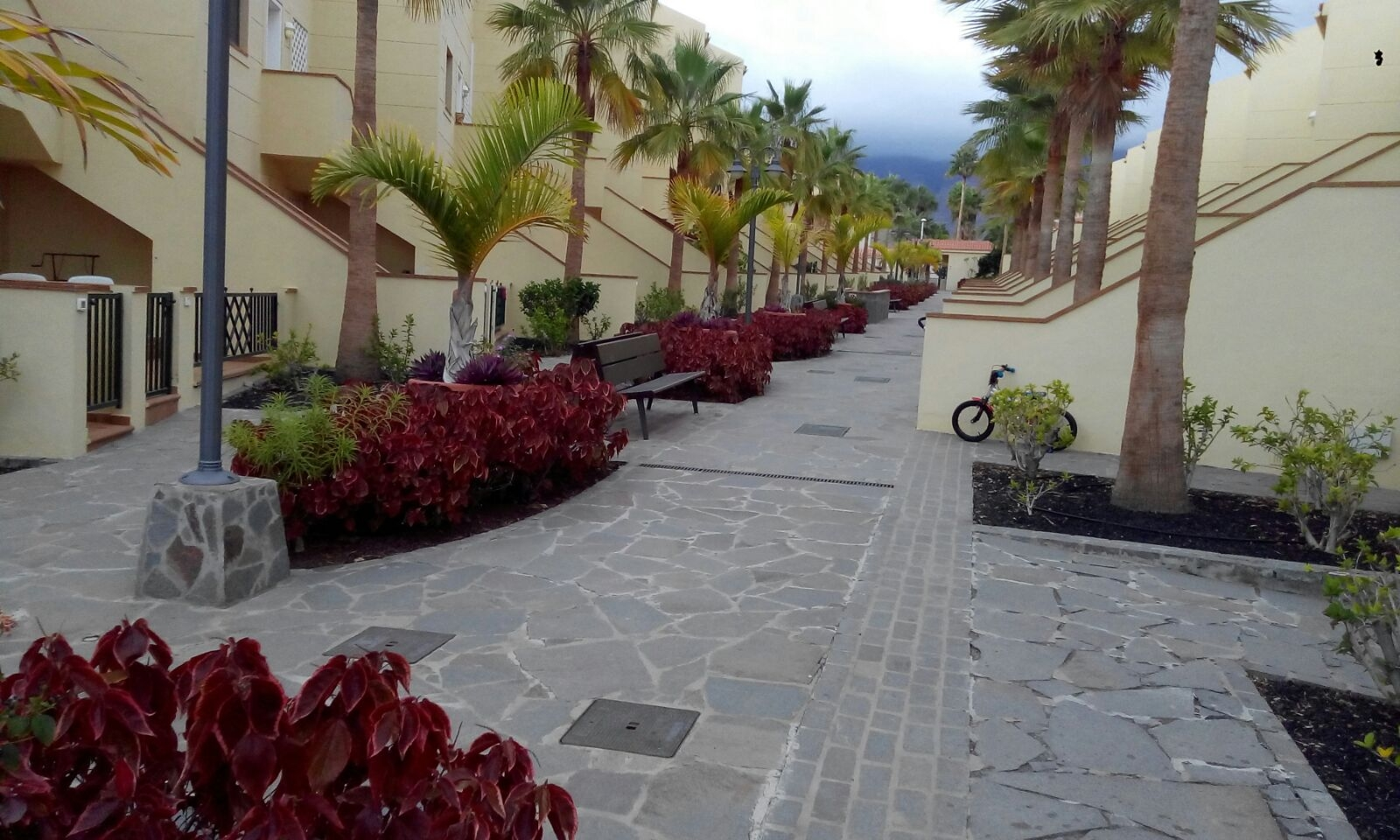 Properties for Sale in Tenerife, Canary Islands, Spain | SylkWayStar Real Estate. 1 Bedroom apartment Bellamar, El Duque. Image-24029