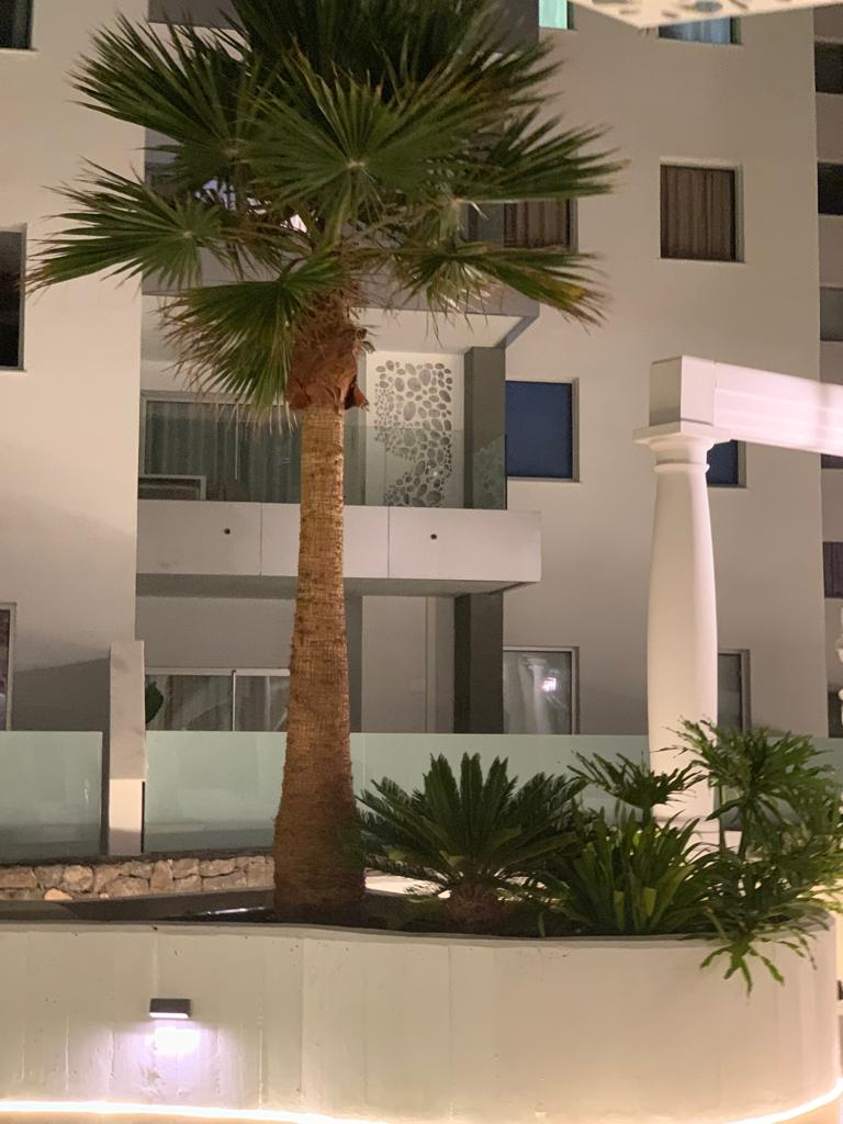 Properties for Sale in Tenerife, Canary Islands, Spain | SylkWayStar Real Estate. 3 bedroom apartment Playa Paraiso. Image-26157