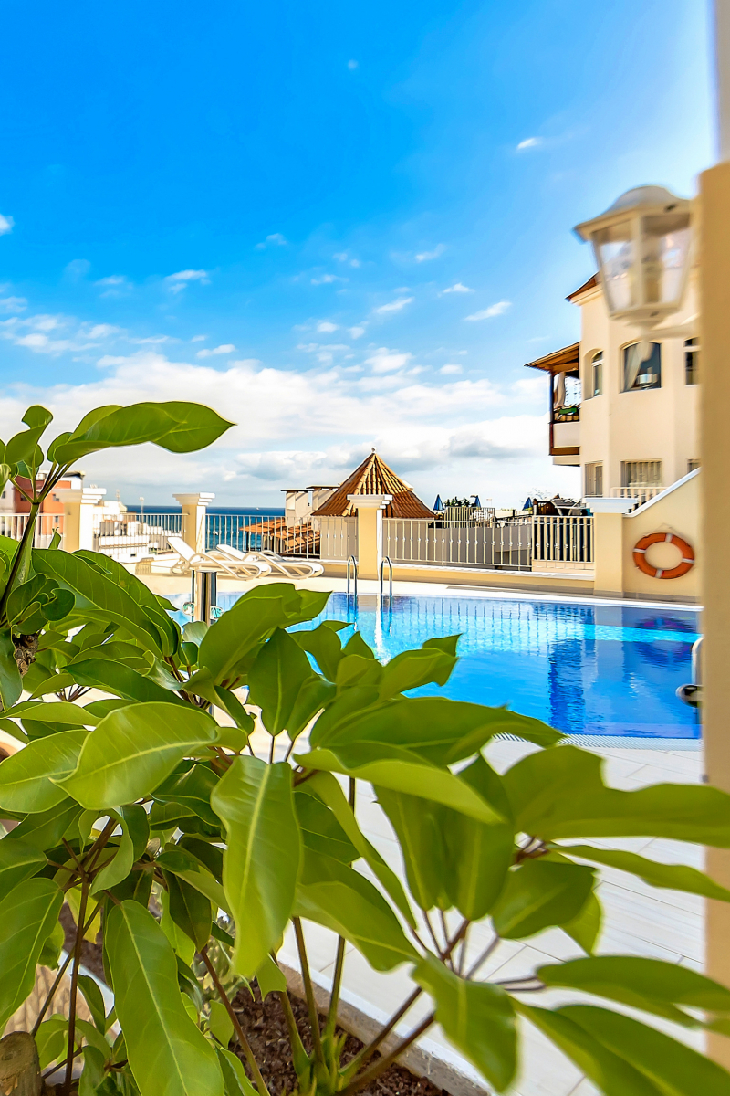 Properties for Sale in Tenerife, Canary Islands, Spain | SylkWayStar Real Estate. EXCLUSIVE OFFER. Image-26334