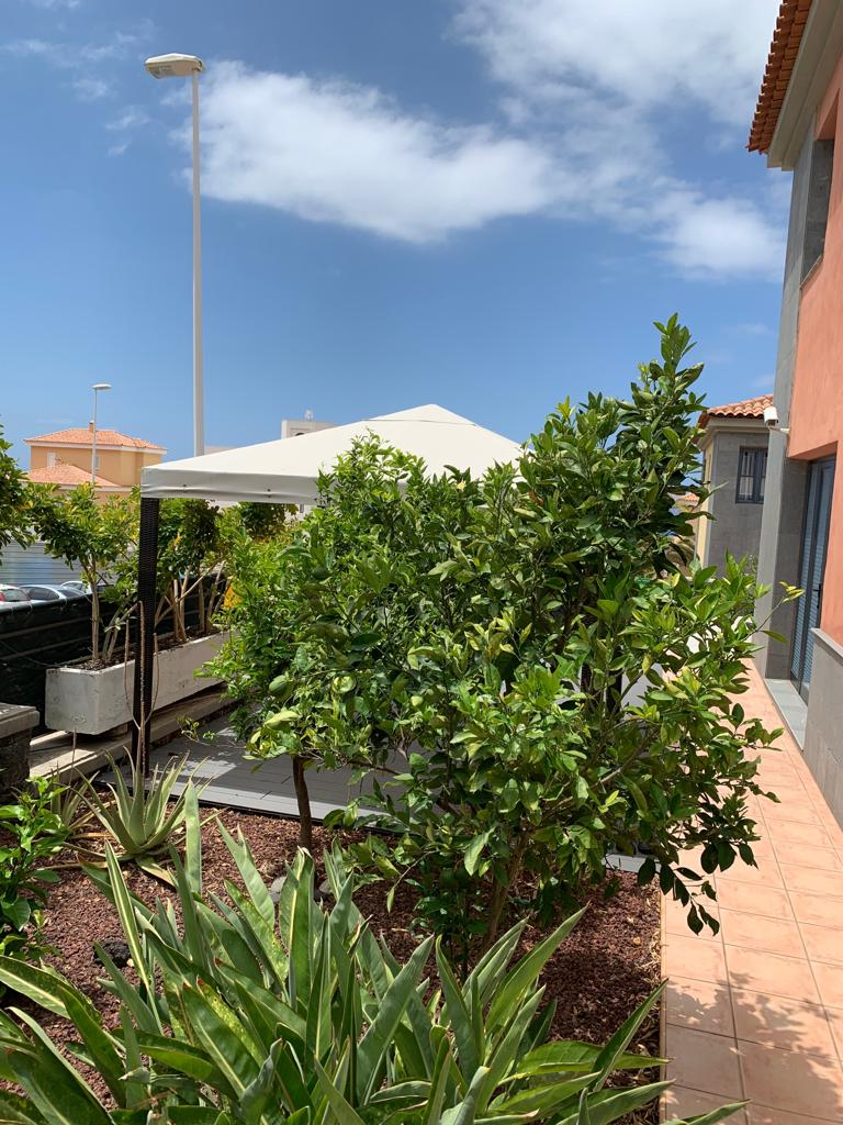 Properties for Sale in Tenerife, Canary Islands, Spain | SylkWayStar Real Estate. Townhouse 3 bedrooms Madroñal . Image-26360